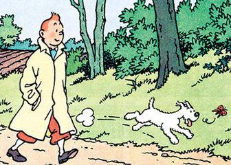 如今,《丁丁历险记》的主人公已经成为欧洲最知名的漫画形象之一