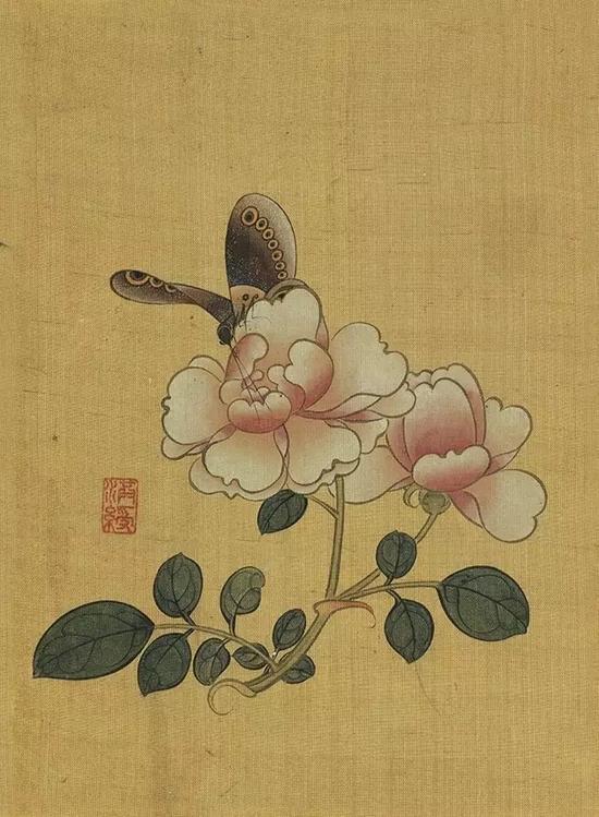 《蔷薇蝴蝶》