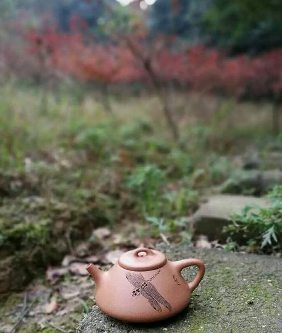 《子冶石瓢壶》段泥