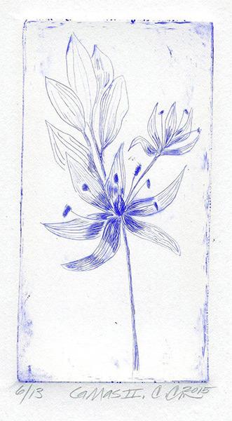 艺术家用YInMn蓝创作的画