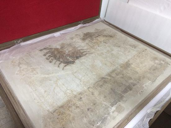 现藏陕西省咸阳市文物保护中心的咸阳宫遗址壁画《驷马图》