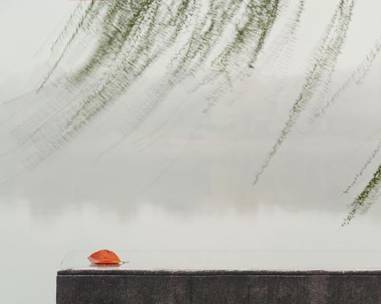 王强《寂静的风》,90x72cm,摄影
