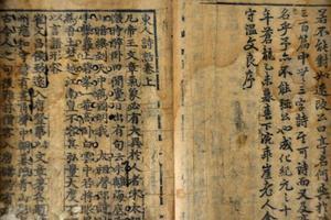 发霉变色 近57%纸类文物需要保存处理