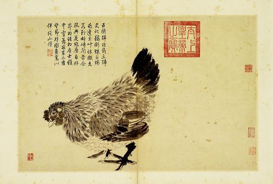 明沈周《鸡》册页