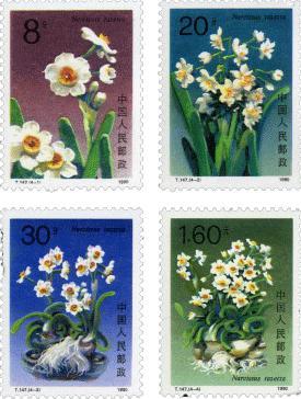邮票赏析:水仙花
