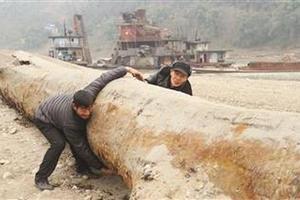村民发现千年乌木被收归国有 获6000元奖励
