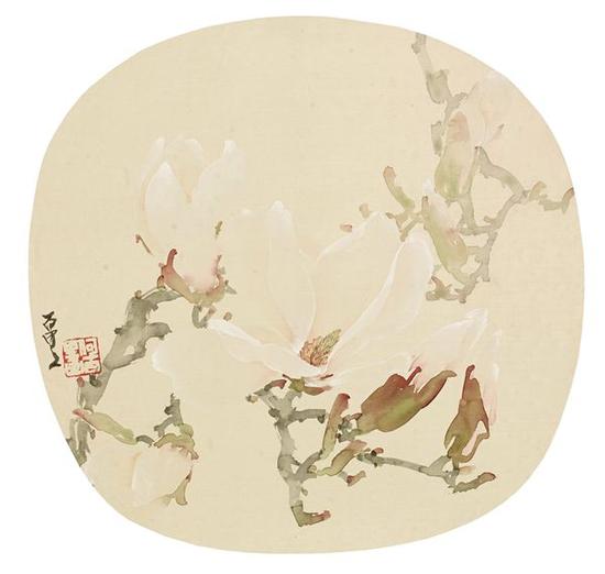 何百里 玉兰 镜片 设色纸本 22×23cm