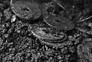 散落的铜钱。本稿图片均由林林摄