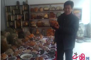 农民收藏奇石成108道满汉全席