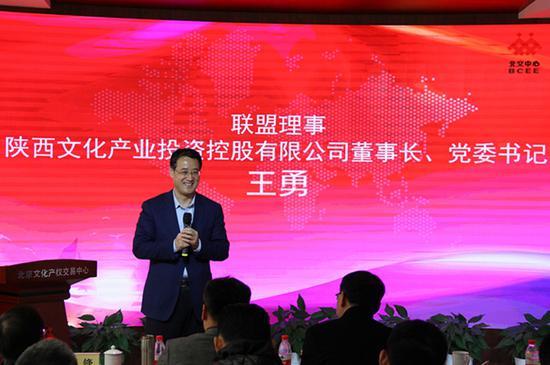 陕西文化产业投资控股有限公司董事长、党委书记王勇发表讲话