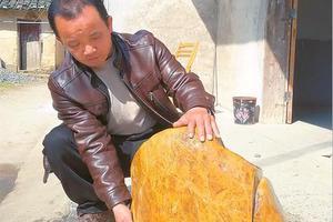 男子自称有百余斤鸡血石 实为黄蜡石