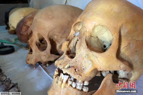 图为墓葬中出土的头骨。
