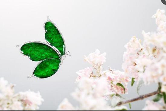 翡翠蝴蝶胸针