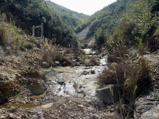 田黄石产地