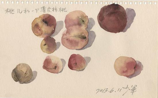 桃儿和一个薄皮核桃 2013年