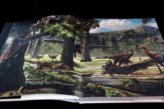《它们:恐龙时代》产品内页实拍图