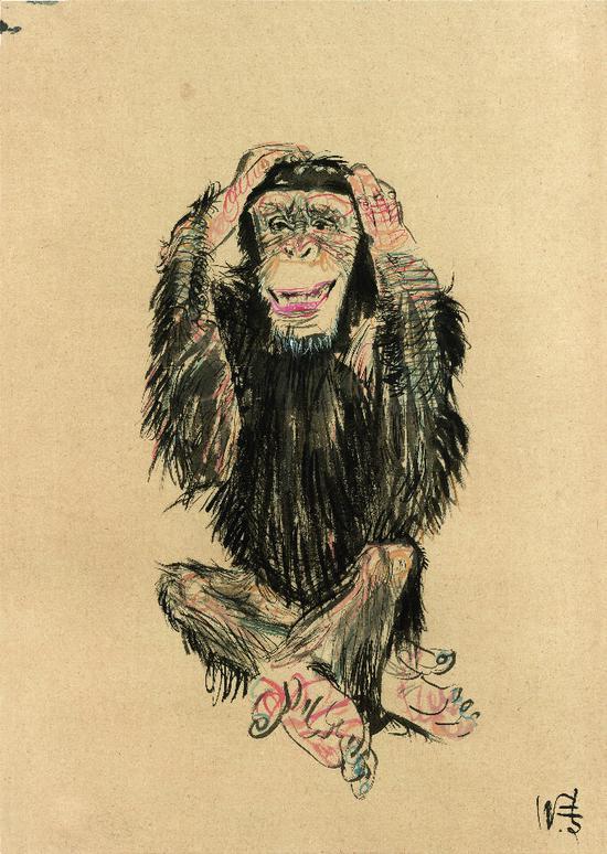 黑猩猩 78.5x110