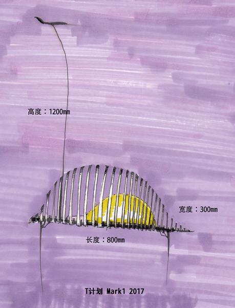 邓悦君-T计划 MARK1-综合材料-80cm×30cm×120cm-2017