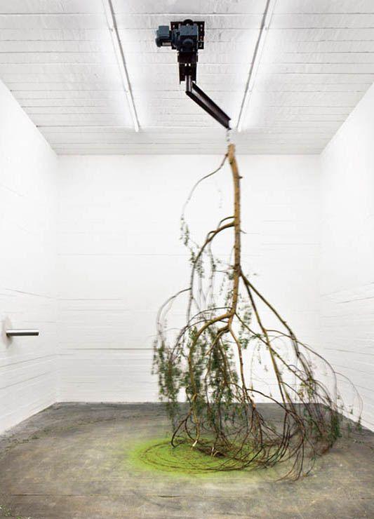 Michael Sailstorfer,《Forst (01)》,2010。摄影:Neu Korr。