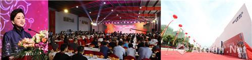中国著名主持人杨澜担任博览会开幕式司仪