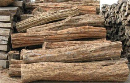 红木禁伐后 哪些木材可能异军突起?