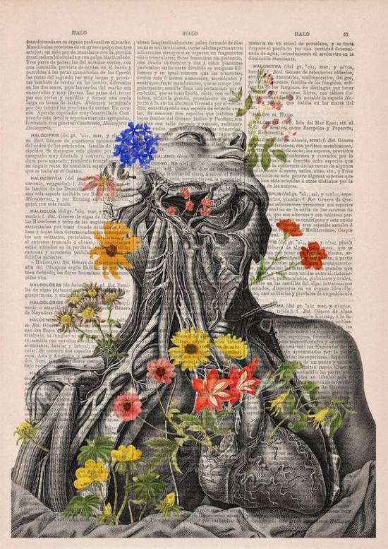 白小姐六合彩在古董报纸上绽放的花朵