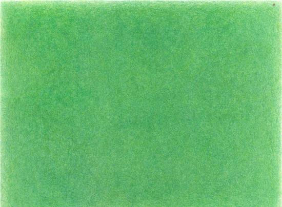 郑菁-《3.1059㎡草坪》-153×203cm-纸本签字笔-2017