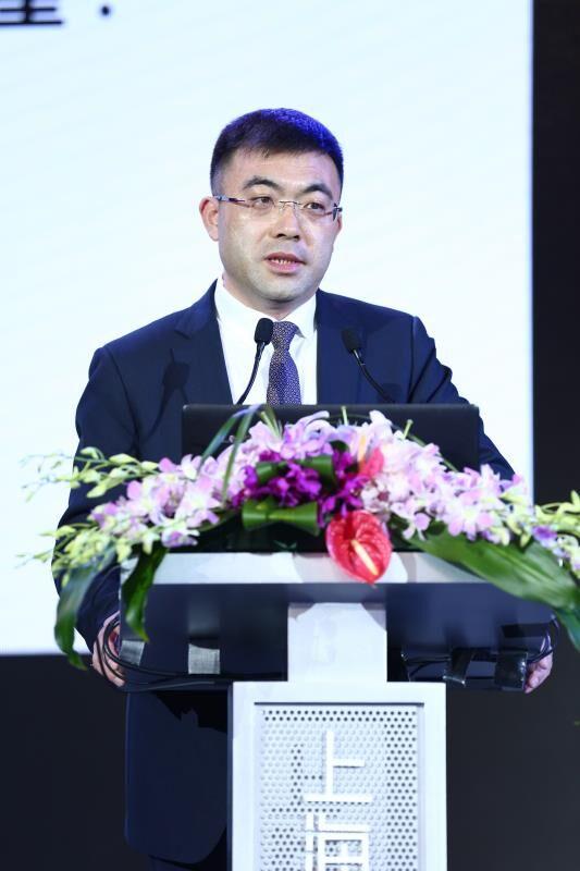 国家对外文化贸易基地副董事长、上海自贸区国际文化投资发展有限公司总经理胡环中