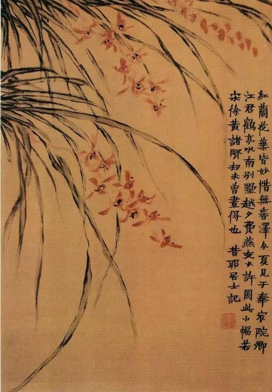 金农《红兰花图》