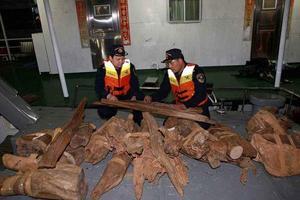 男子从斯里兰卡走私价值42万余元沉香木入境获刑
