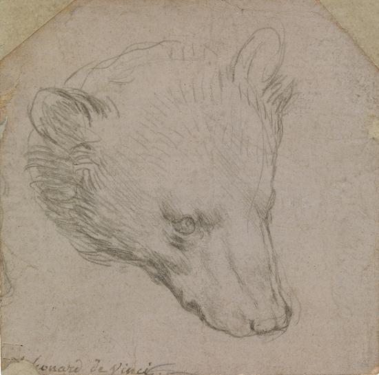 熊头素描,列昂纳多·达芬奇,莱顿收藏