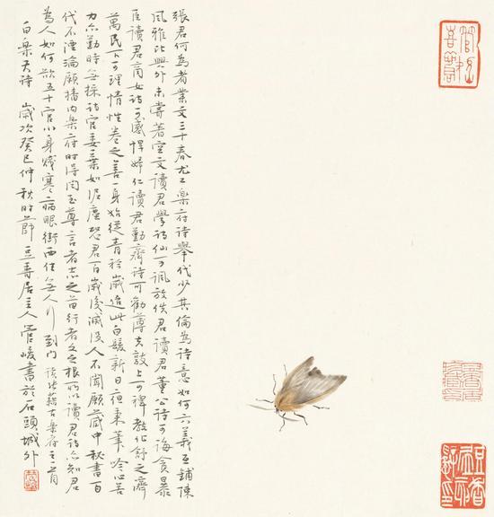 《白居易诗》40cm x 37cm  2013年