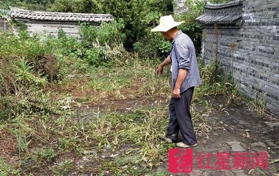 ▲郑荣良说这就是他与盗墓贼搏斗的地方。图片来源红星新闻