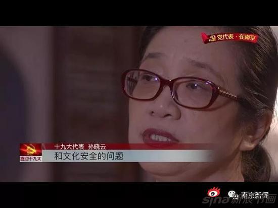 孙晓云还担心文化安全的问题