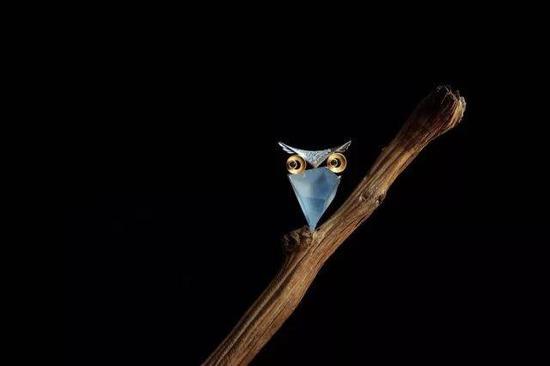 刘明明《猫头鹰》
