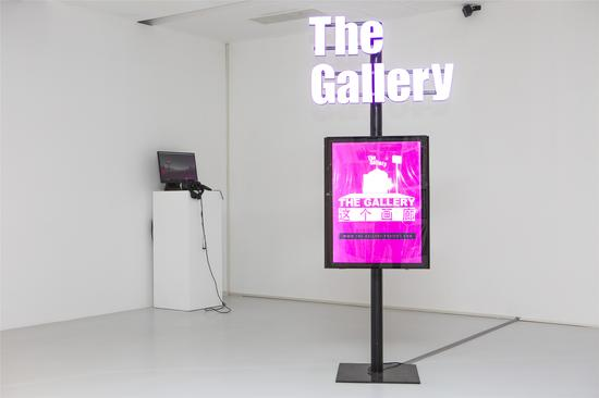 艺术家王欣作品《这个画廊》