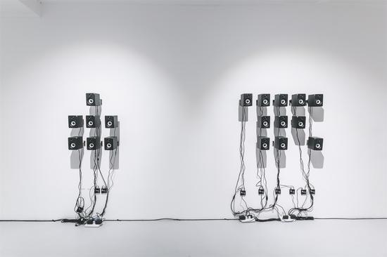 艺术家Darren Bader作品《某些-任何-没有》及《讲话入门套件》