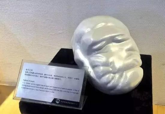 图为博物馆内的老子珍珠