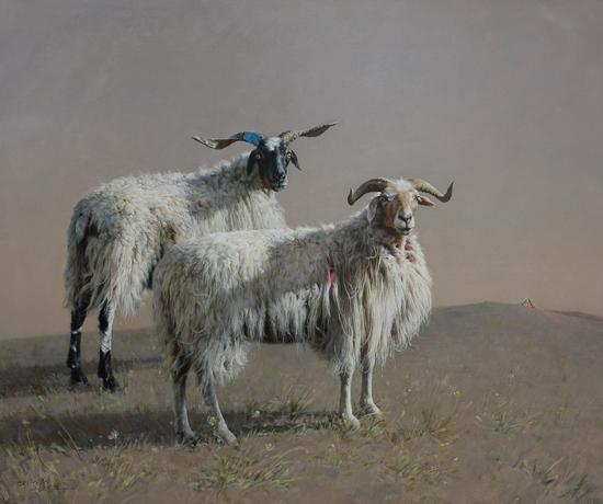 藏羊和经幡