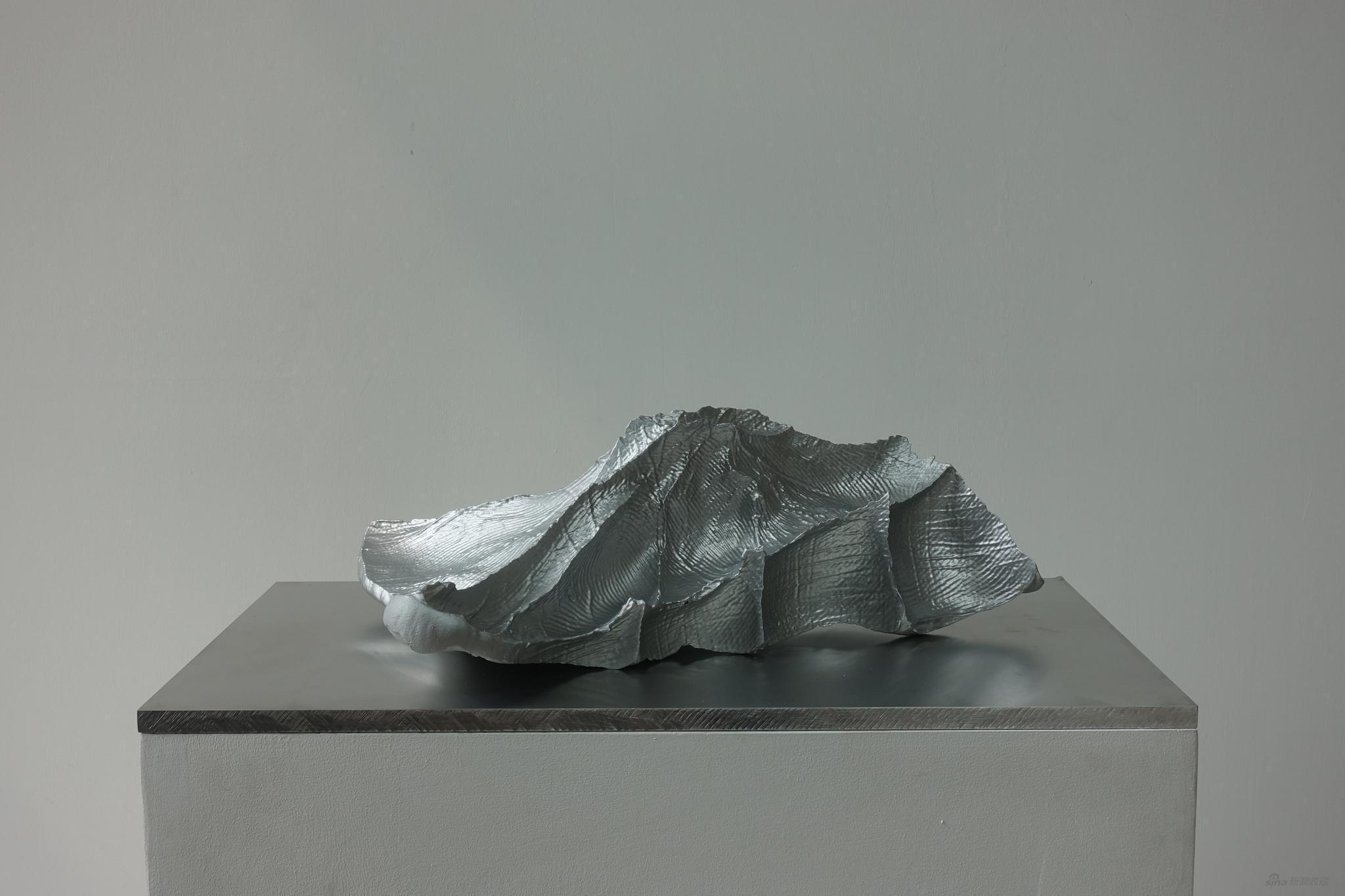 隋建国 云中花园-岛屿17#,光敏树脂3D打印,55x38x18cm,2013。