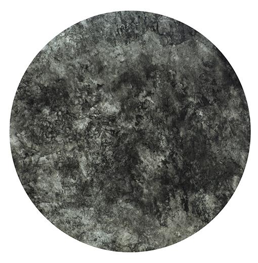 吴笠帆作品 《浓夏》  水墨纸本  直径45cm 2018