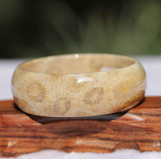 唯一有生命的亿万年珠宝:珊瑚玉简介