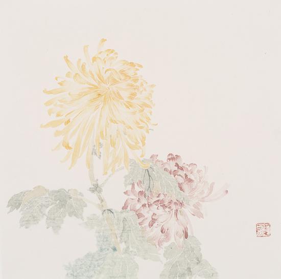 石茹,双色菊,纸本设色,33x33cm,2017