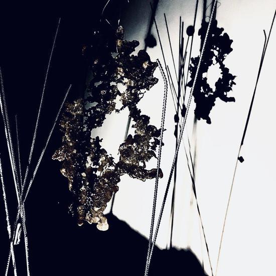 """M花园:张丹个展"" 展览现场"