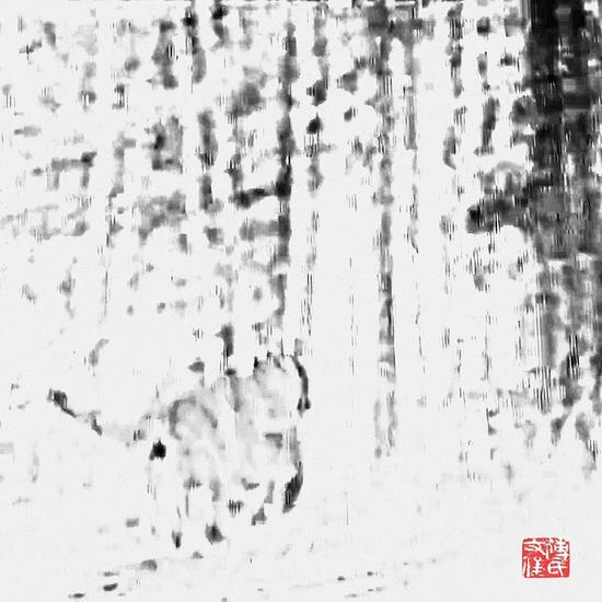 《长啸山林》傅文俊 数绘摄影 60x60cm 2017-2018