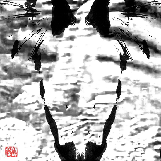 《从何而来》傅文俊 数绘摄影 60x60cm 2017-2018