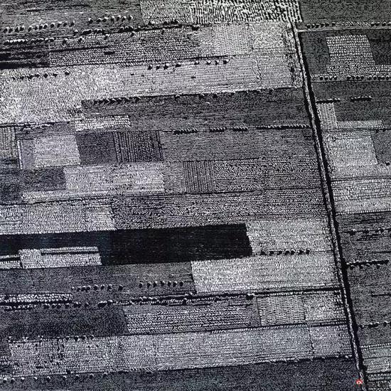 《土地》,2004年,120*120cm,木刻版画