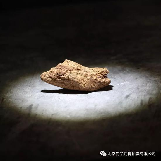 03093越南富森红土沉香原材