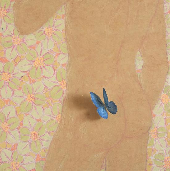 Butterfly Manno.8-纸本设色-32cmx32cm-2016年