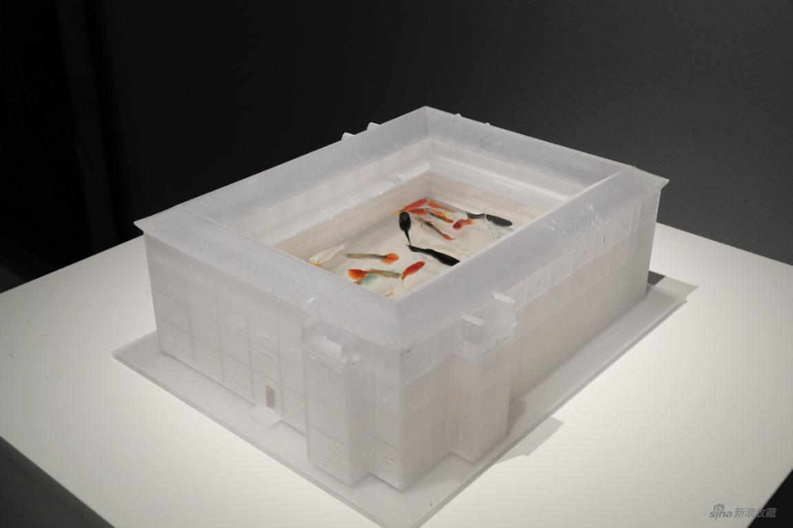 应天齐 《鱼与渔》 装置,水、鱼、监控设备、记录本 150×116×50cm 2020